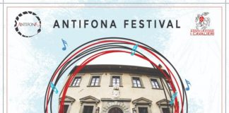 festival metato